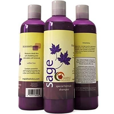best low poo shampoo for curly hair
