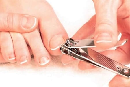 best nail clipper 2018