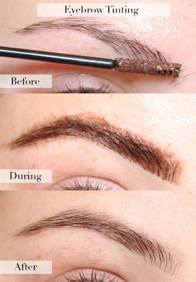 brow tinting kit